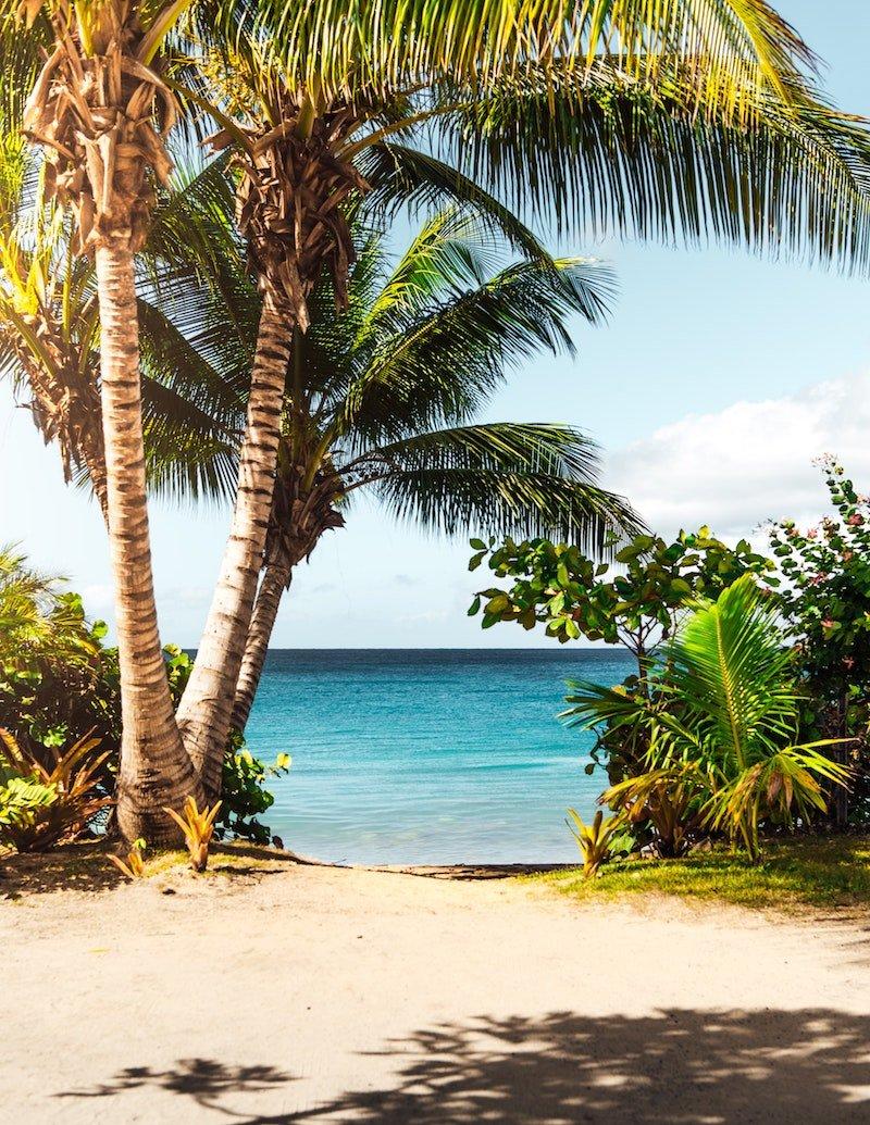 beach view by matthew-brodeur