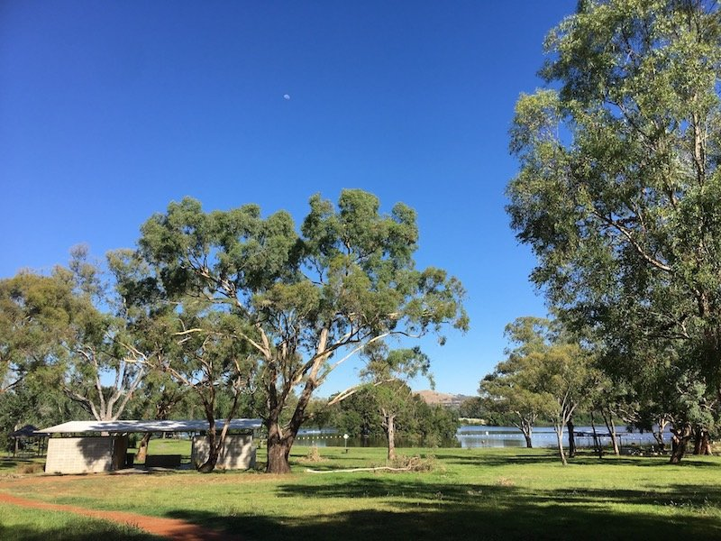 black mountain peninsula playground in canberra grounds pic