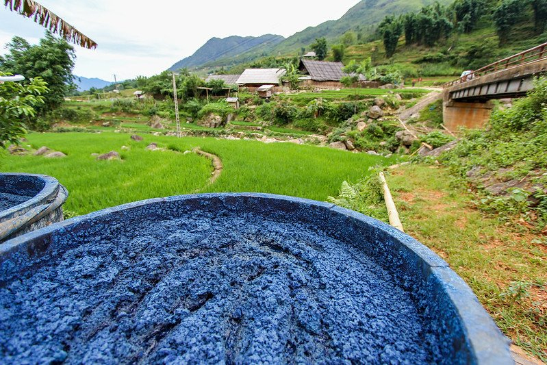 blue indigo dye by the h'mong people by rory macleod
