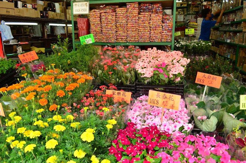 flower market in hong kong pic by carmen artigas martinez