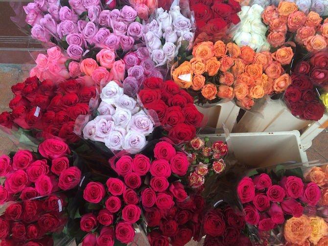 image - hong kong flower market blooms