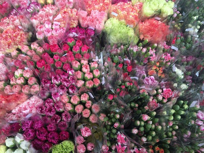 image - hong kong flower market for sale