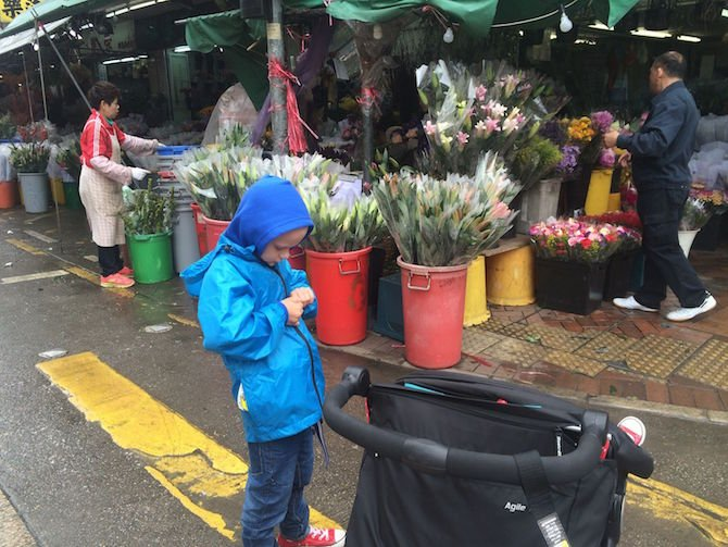 image - ned atflower market hong kong