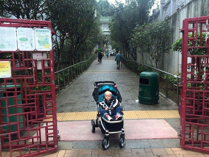 image - yuen po bird gardens red gates