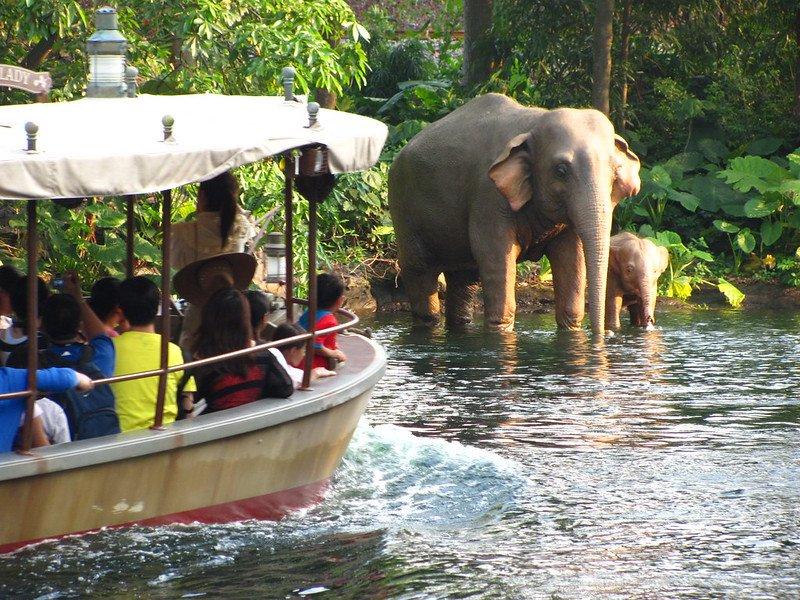jungle river cruise at hong kong disneyland