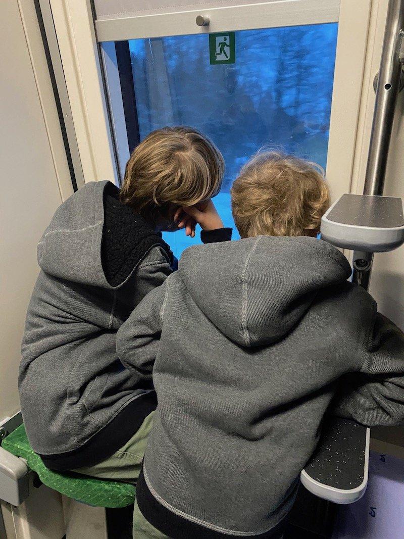 Image - Helsinki to rovaniemi train window view of forest