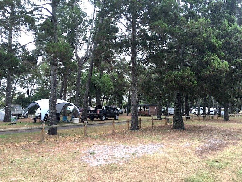 brunswick heads camping at the terrace reserve pic