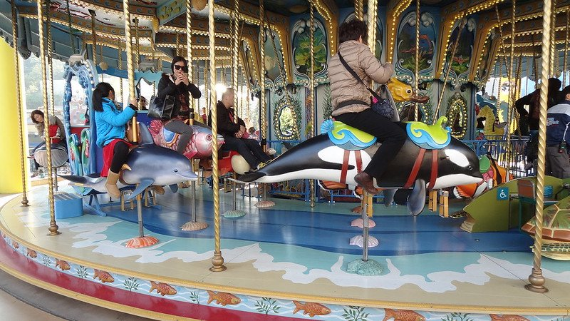 ocean park carousel pic by martin lewison flickr
