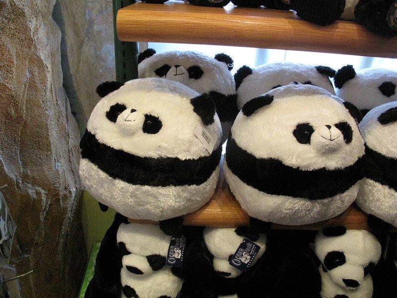 panda souvenirs at ocean park by mrsrobot0