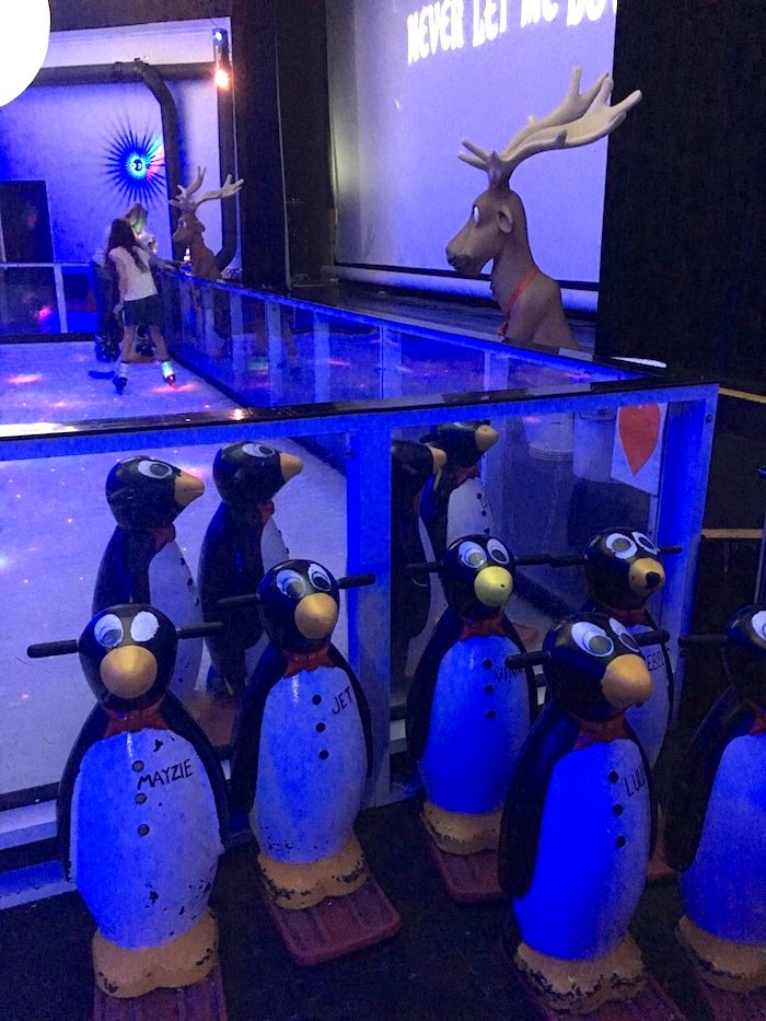 Planet Chill Ice Skating penguins pic