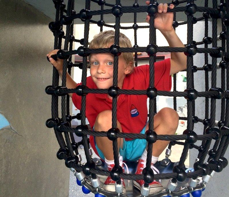 frew park milton playground cage 800 x 600