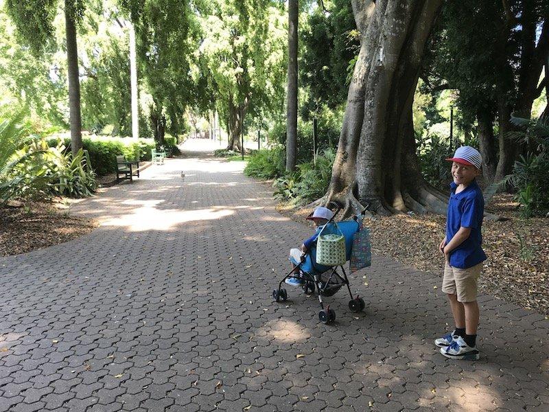 how to get to brisbane botanic garden playground pic
