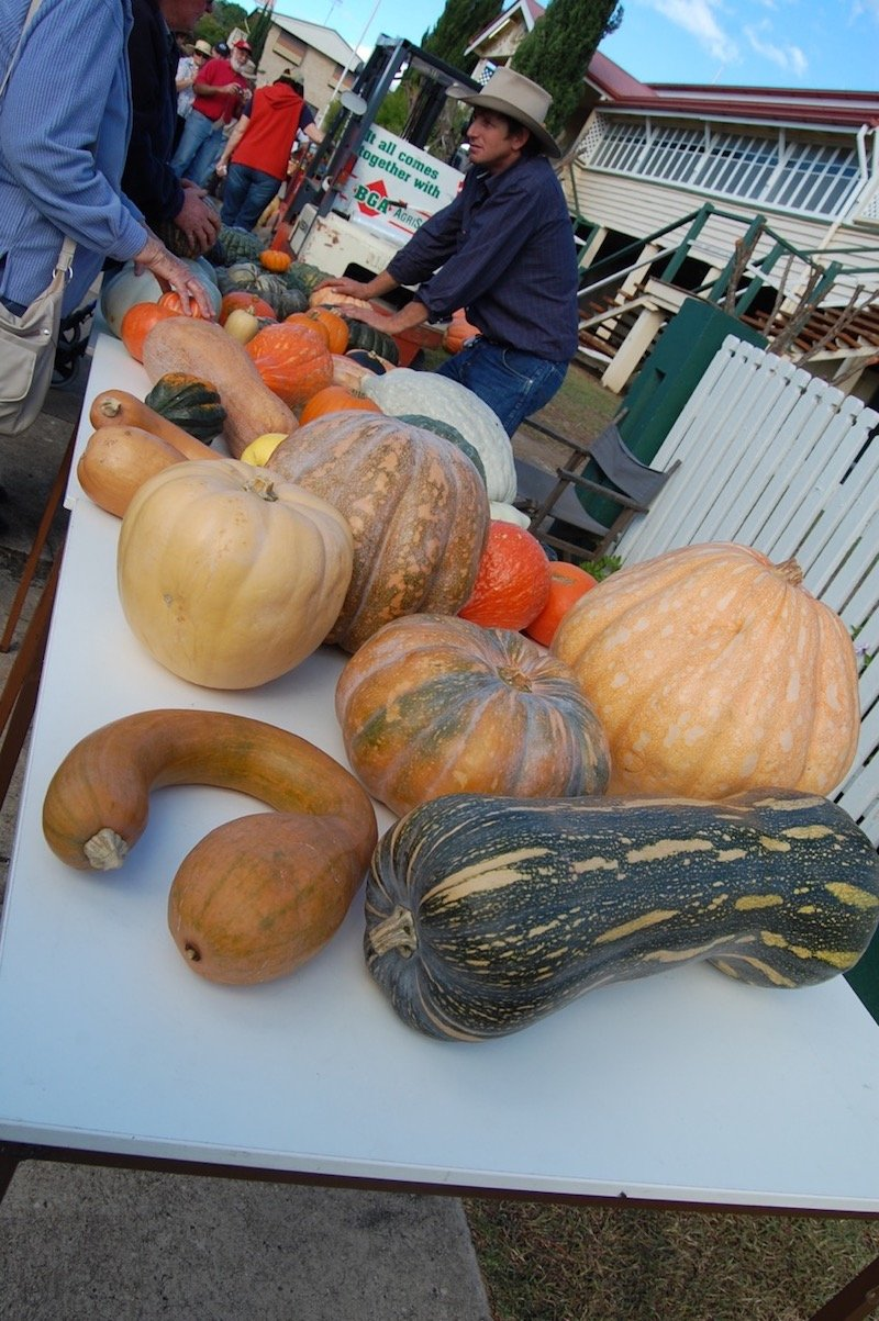 photo - goomeri pumpkin festival display