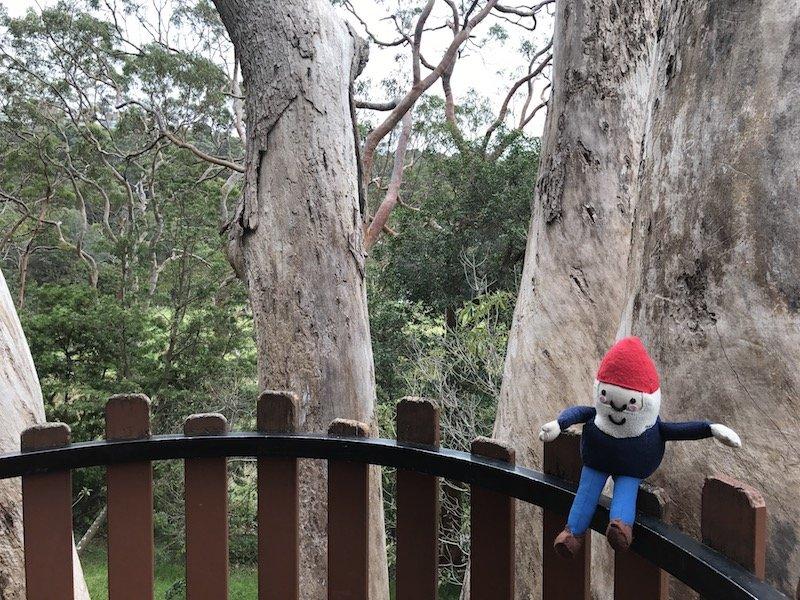 photo - nature playground