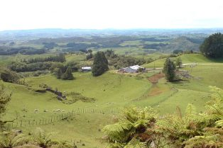 800px-Farming_Country_In_Waitomo_Area