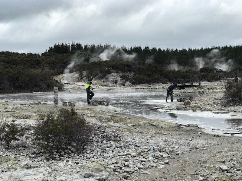 Hells Gate Rotorua after wetlands walk pic