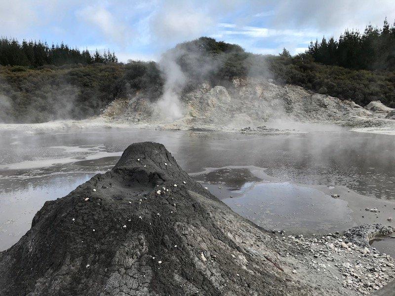 Hells Gate Rotorua mud volcano close up pic