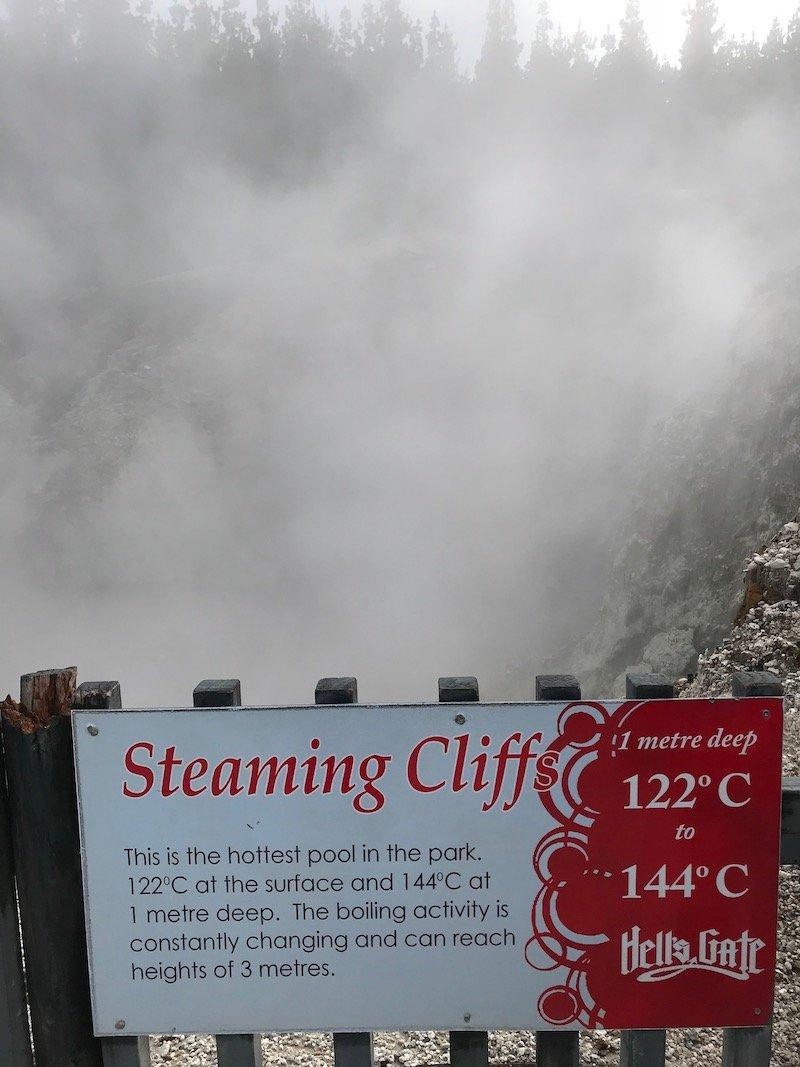 Hells Gate steaming cliffs pic
