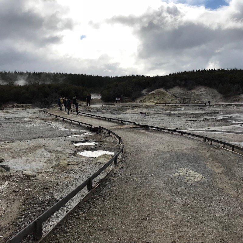 Hells Gate Rotorua terrain pic