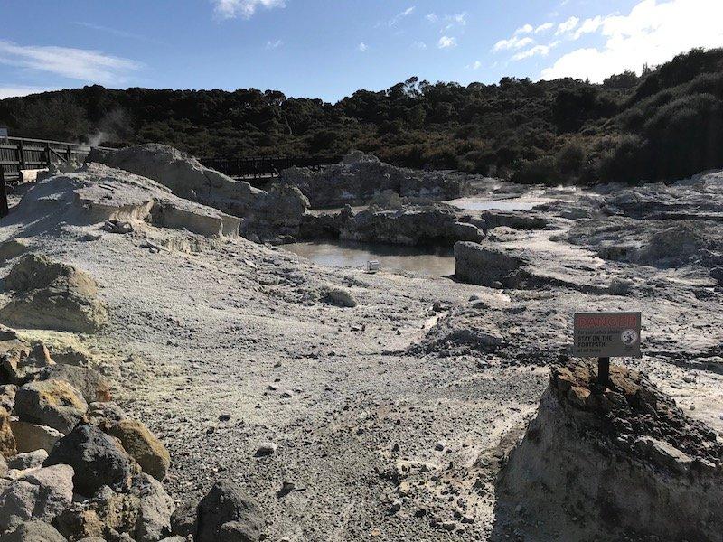 Hells Gate Rotorua walk pic