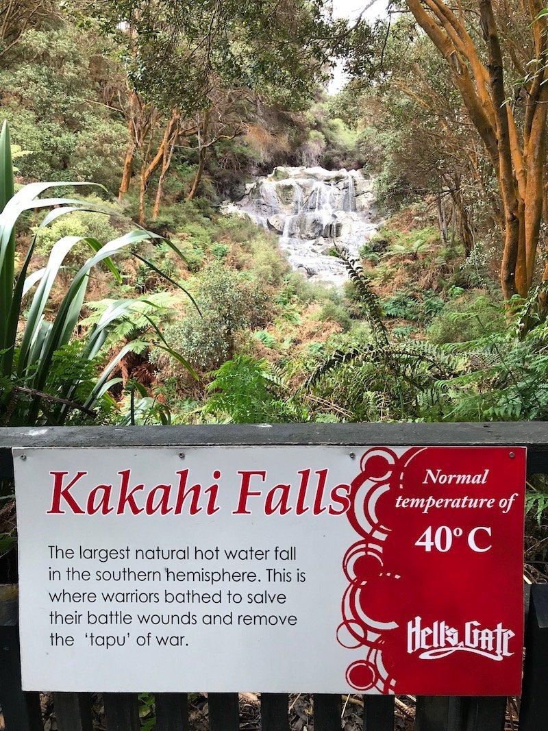 Hells Gate Rotorua wetlands kakahi falls pic