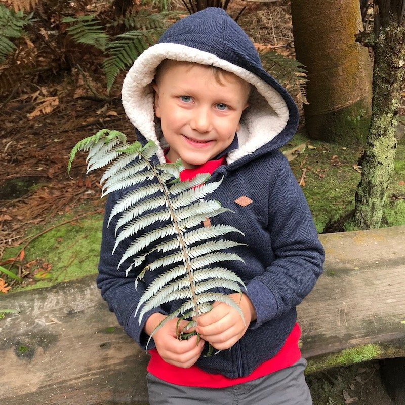 Hells Gate Rotorua wetlands silver fern with jack pic