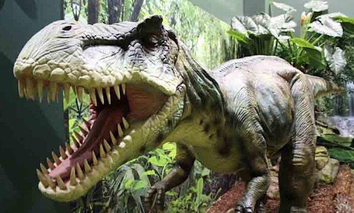 Image-Indoor-Mini-Golf-Auckland-dinosaur-700
