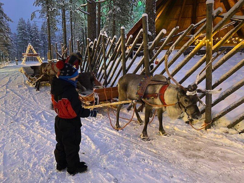 Image - reindeer sleigh 1
