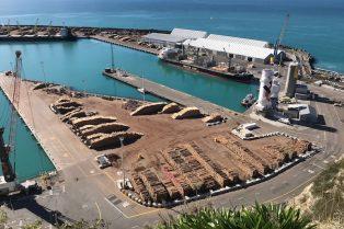 Napier Port view pic