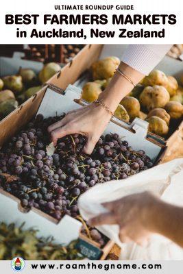 PIN auckland farmers markets