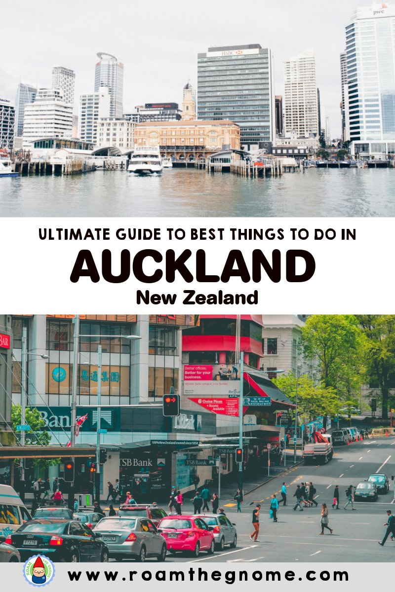 PIN auckland things to do