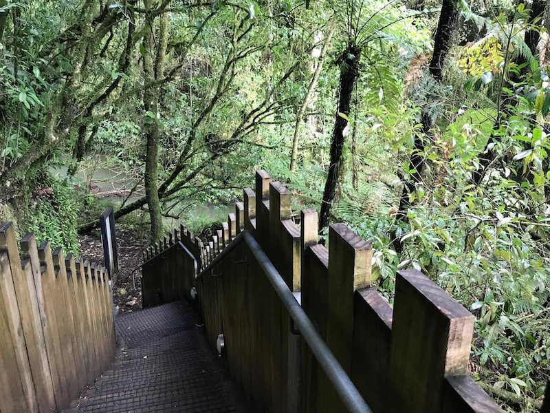 Photo- Waitomo caves for kids pathway out