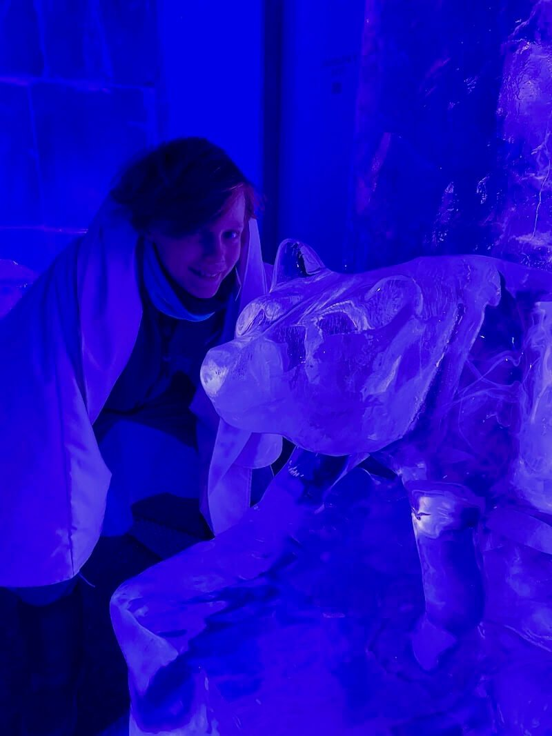 image - santa park ice sculptures bear with ned