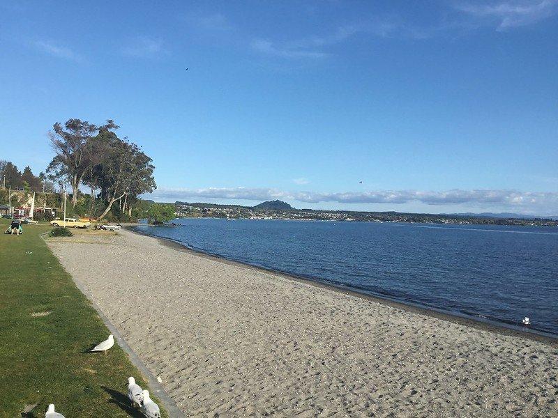 lake taupo beach pic by denis bin