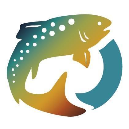 national trout centre logo
