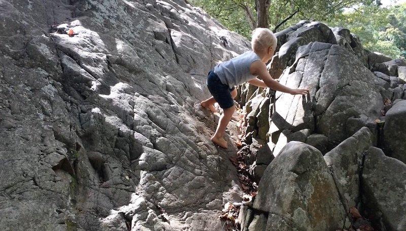 photo - currumbin rock pools gold coast climbing
