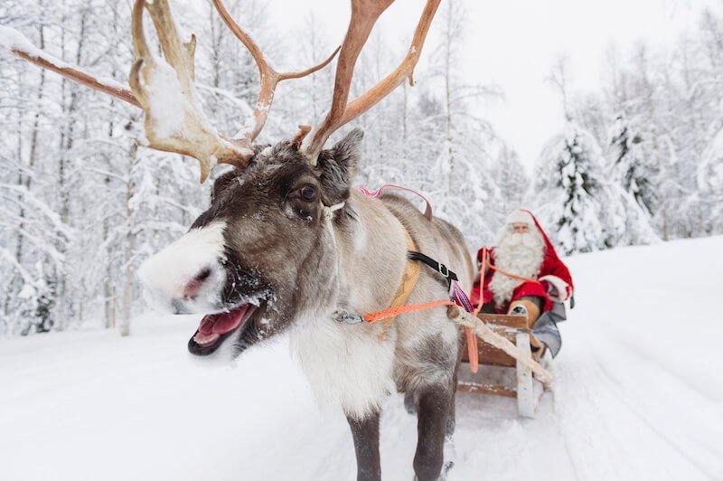 image - santa-claus-reindeer-sleigh-ride-rovaniemi-lapland-finland (1)