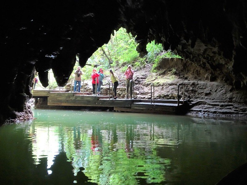 waitomo glowworm caves by denis bin