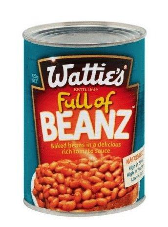 watties beans pic