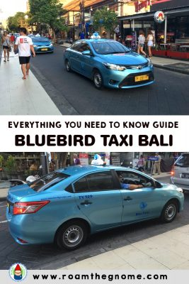 BLUEBIRD TAXI BALI SERVICE – EVERYTHING YOU SHOULD KNOW BEFORE YOU BOOK