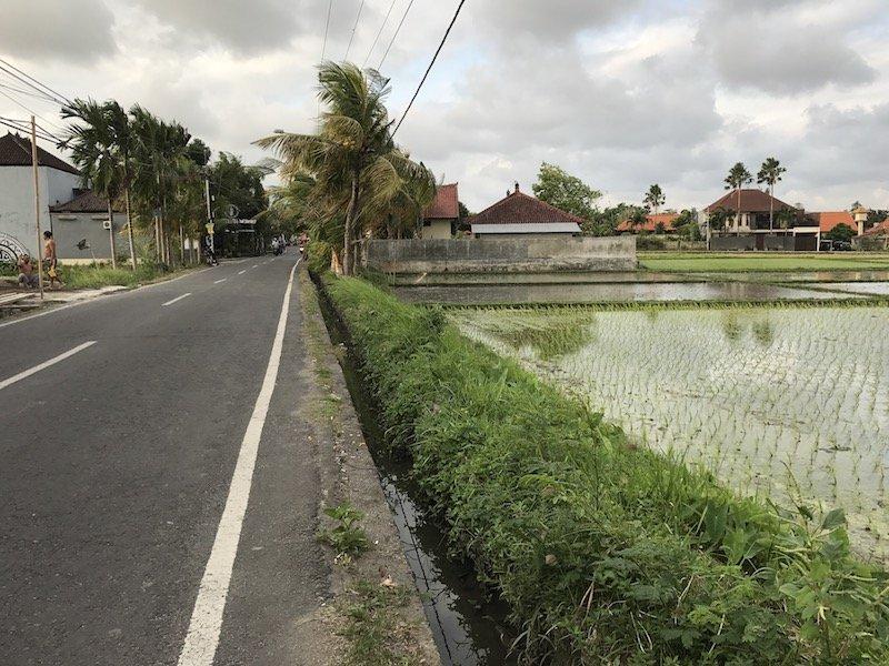 image - bali canggu