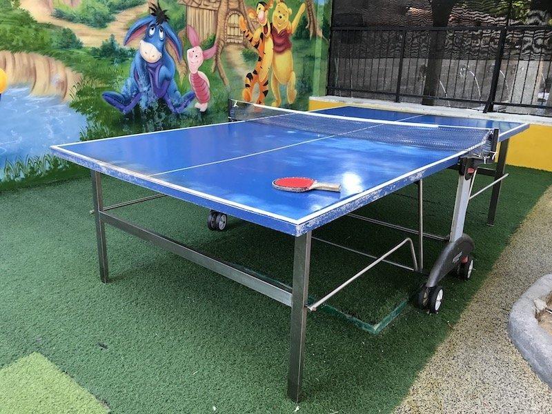 image - bali dynasty table tennis