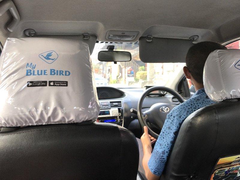 image - bluebird taxi bali headrest covers