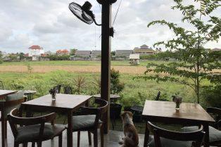image - cinta cafe canggu tables