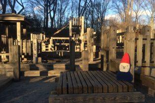 image - diana ross playground new york