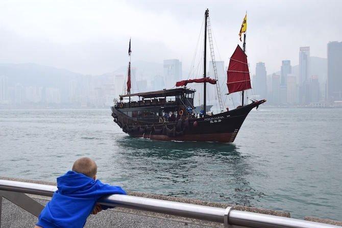 image - hong kong avenue of stars ned looking at junk boat