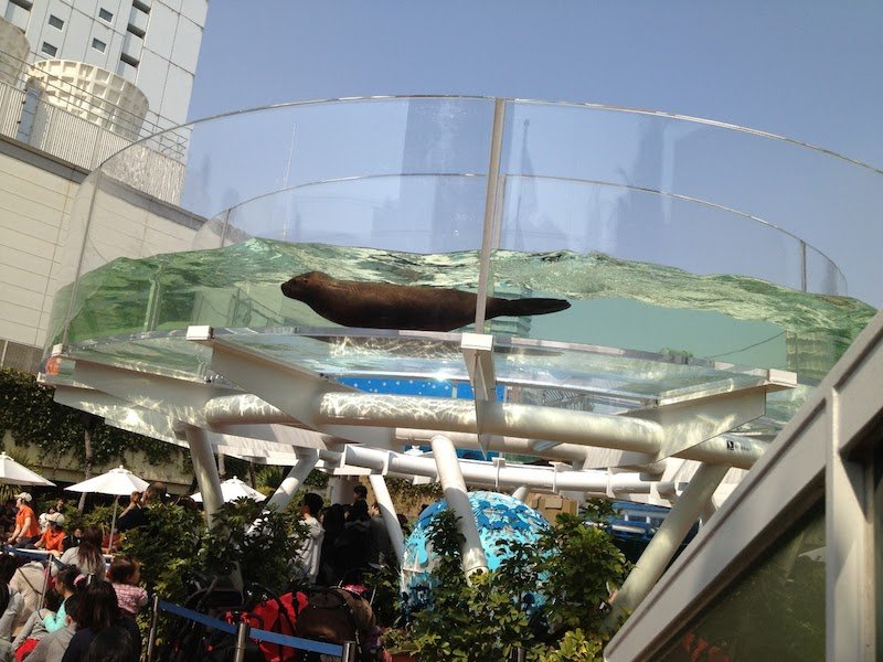 image - sunshine city aquarium from blogger