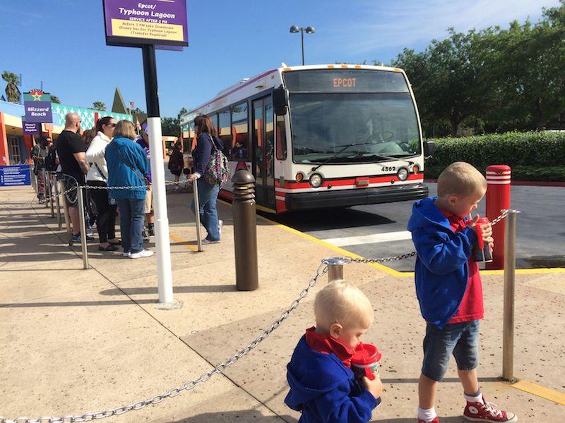 image - disney world buses shuttles