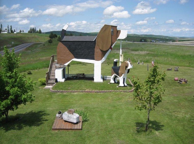 image - dog park bark inn