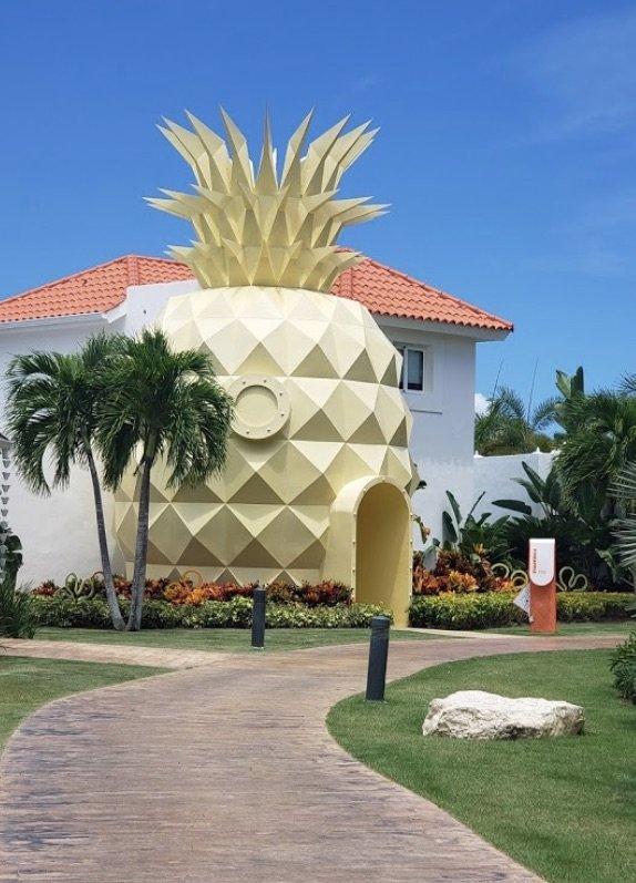 image - the pineapple villa 1